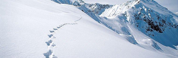 Winterlandschaft im Kleinwalsertal