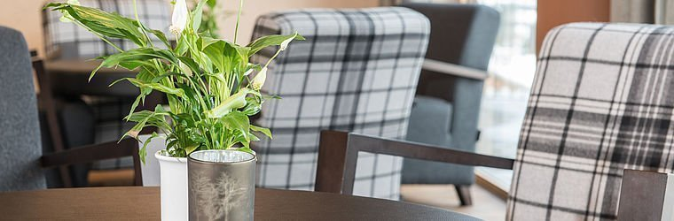 Tisch in der Lounge im Alphotel